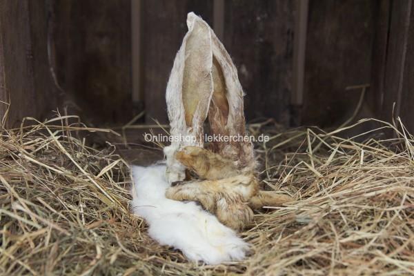 Kaninchen Fell Mix